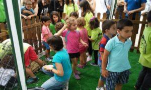 Los niños y las fiestas infantiles con animales de la granja móvil